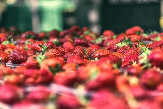 aardbeien taart Plougastel