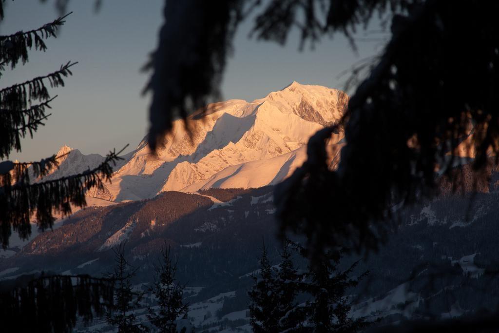 Mont-Blanc uitzicht vanuit boomhutten