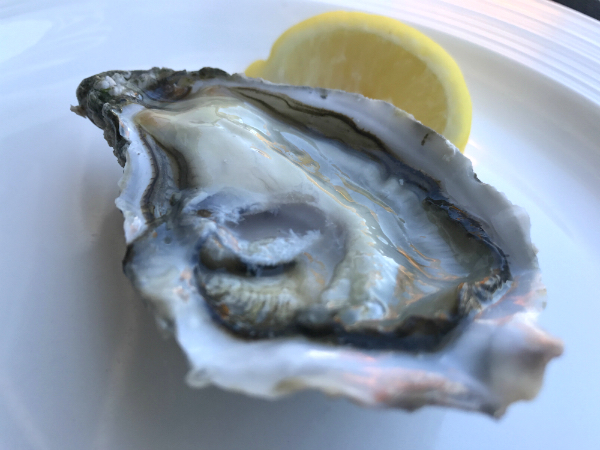 oesters Marennes Charente-Maritime