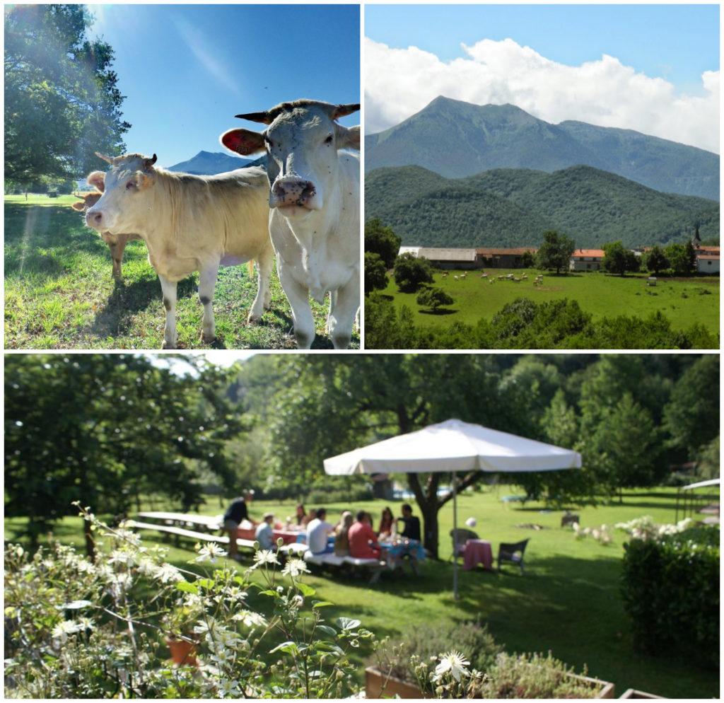 kidsproof gîtes appartementen boerderij Pyreneeen