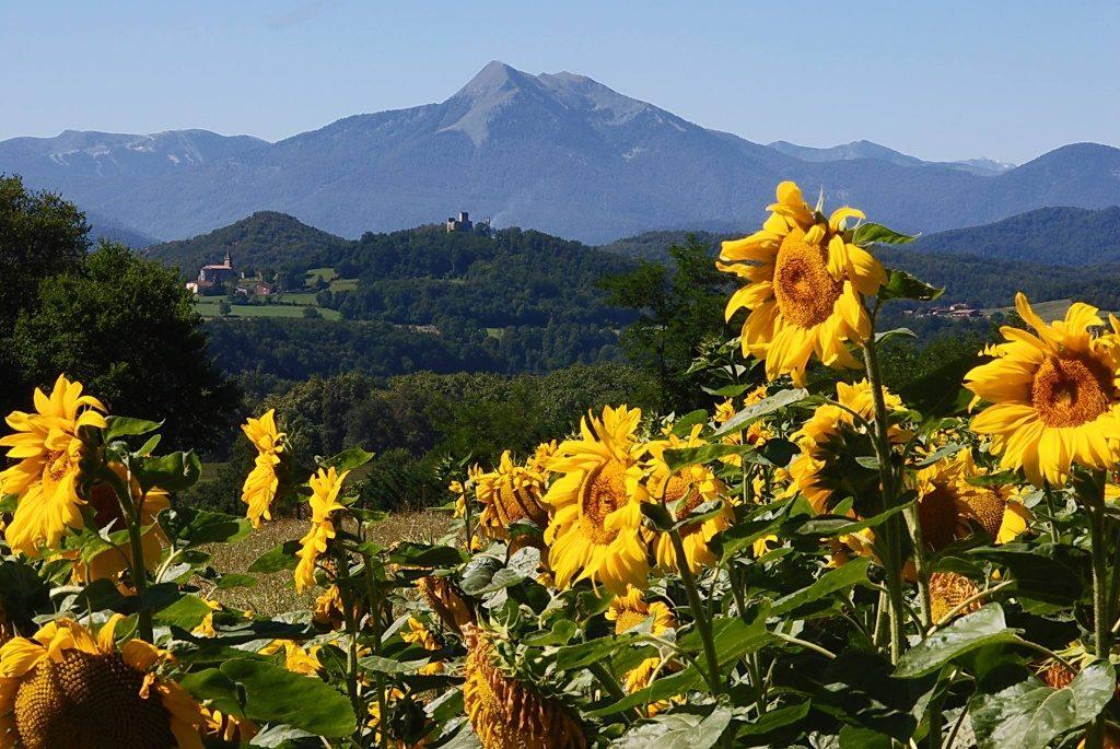 vakantiehuizen gezinnen Pyreneeen Zuid-Frankrijk Spaanse grens kidsproof