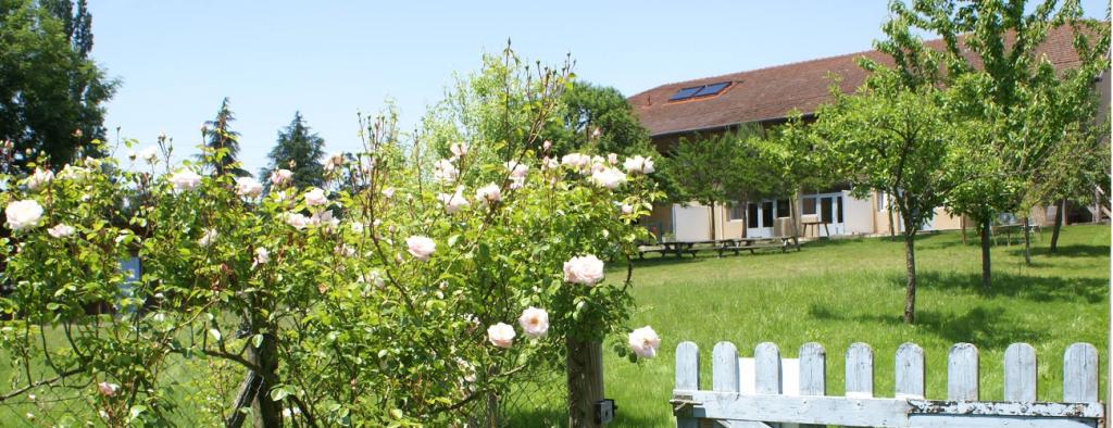 vakantiedomein op boerderij in Zuid-Frankrijk ontspannen
