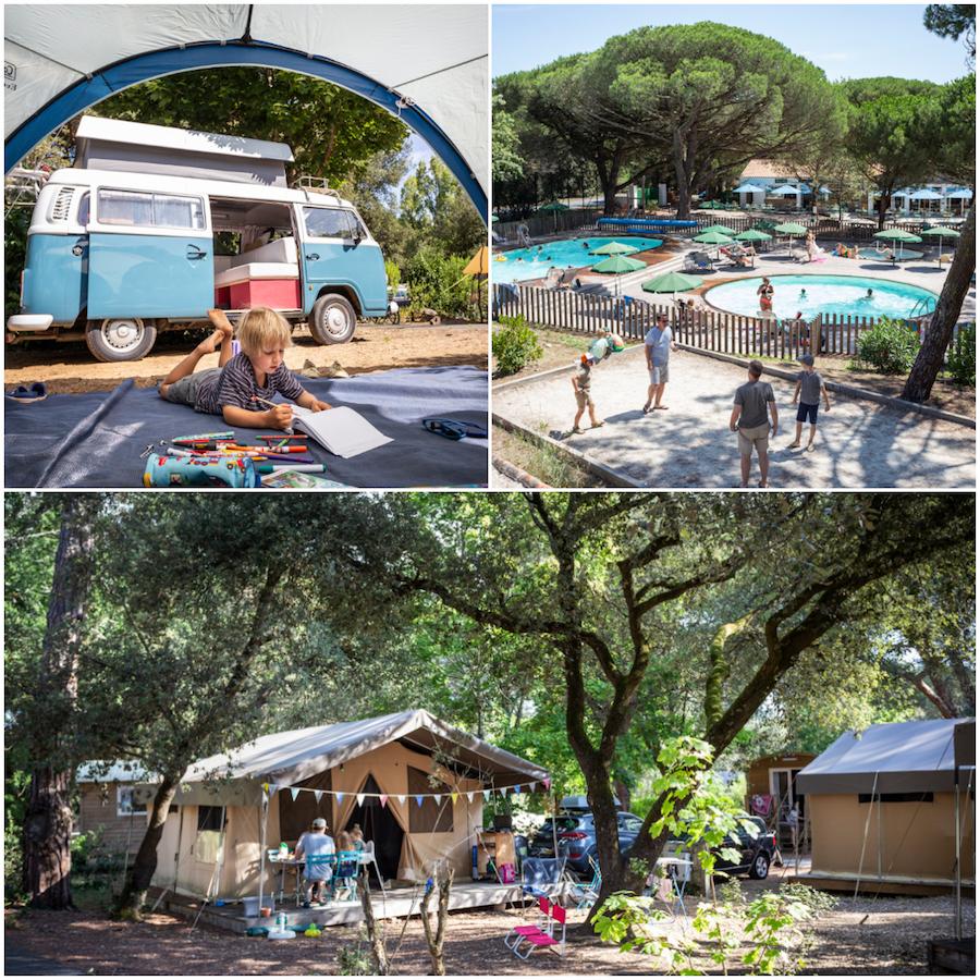 CHardons bleus camping Huttopia op eiland Ile de Ré