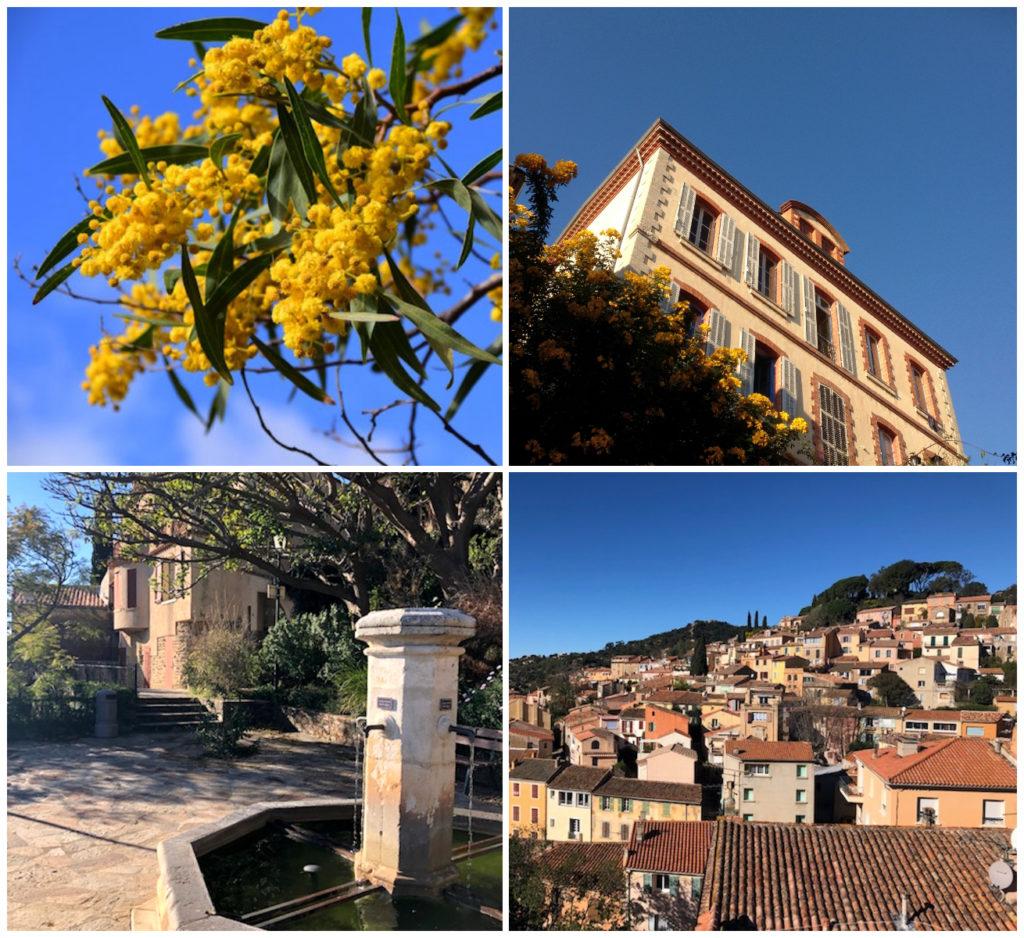Bormes-les-Mimosas Provence