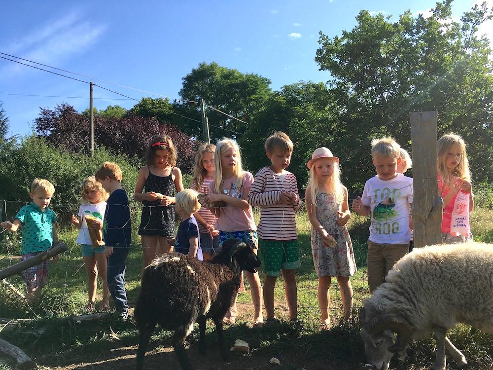Kinderen-bij-Mas-den-Haut-Limousin