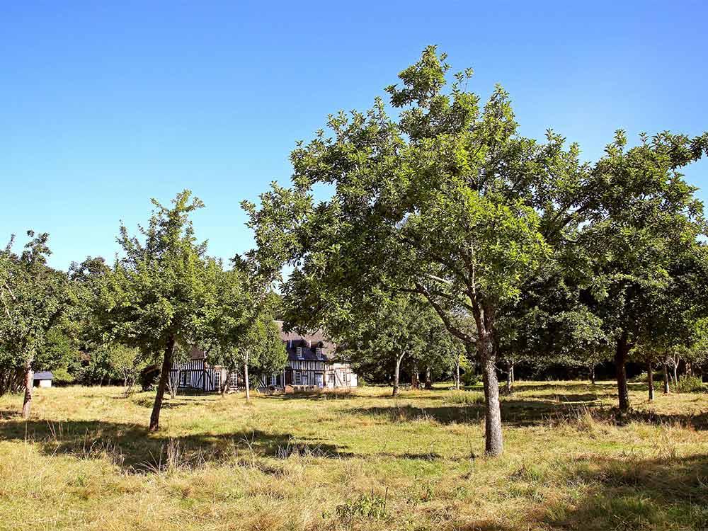 camping Calvados Normandië