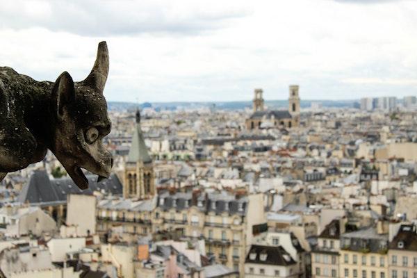 Notre-Dame gargouille