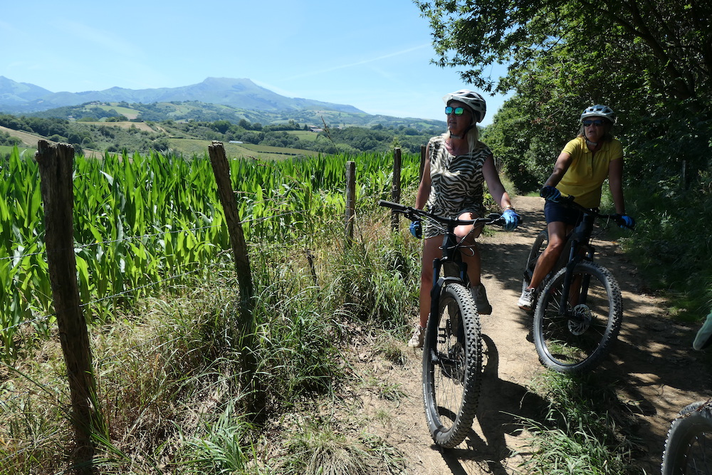Mountainbike-Rando-Quad