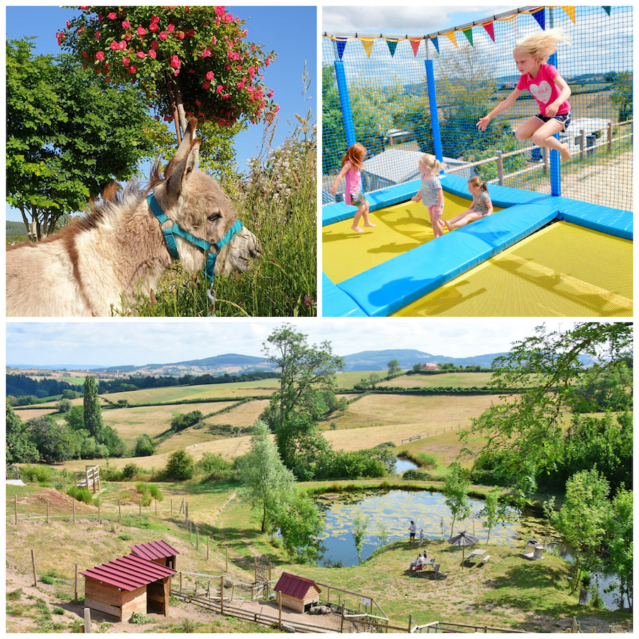 kindvriendelijke camping kinderboerderij kidsclub