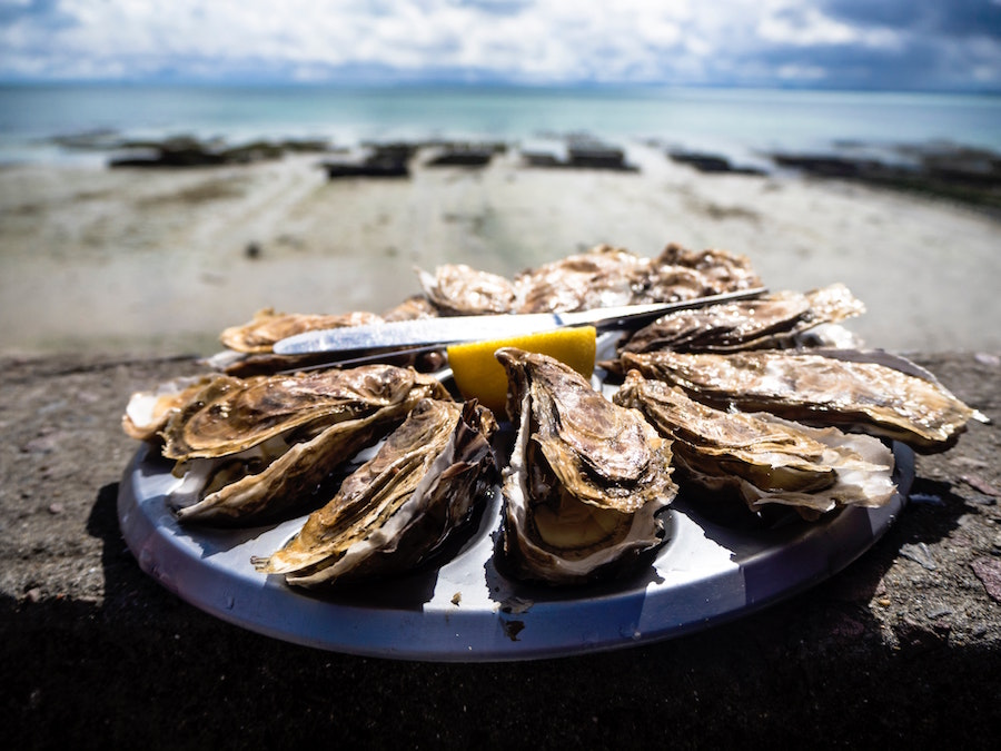 oesters Cancale