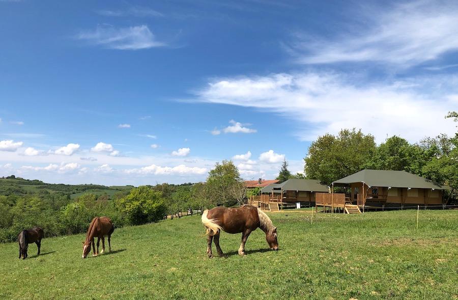 safaritenten ariege pyreneeen Domaine Cammazet