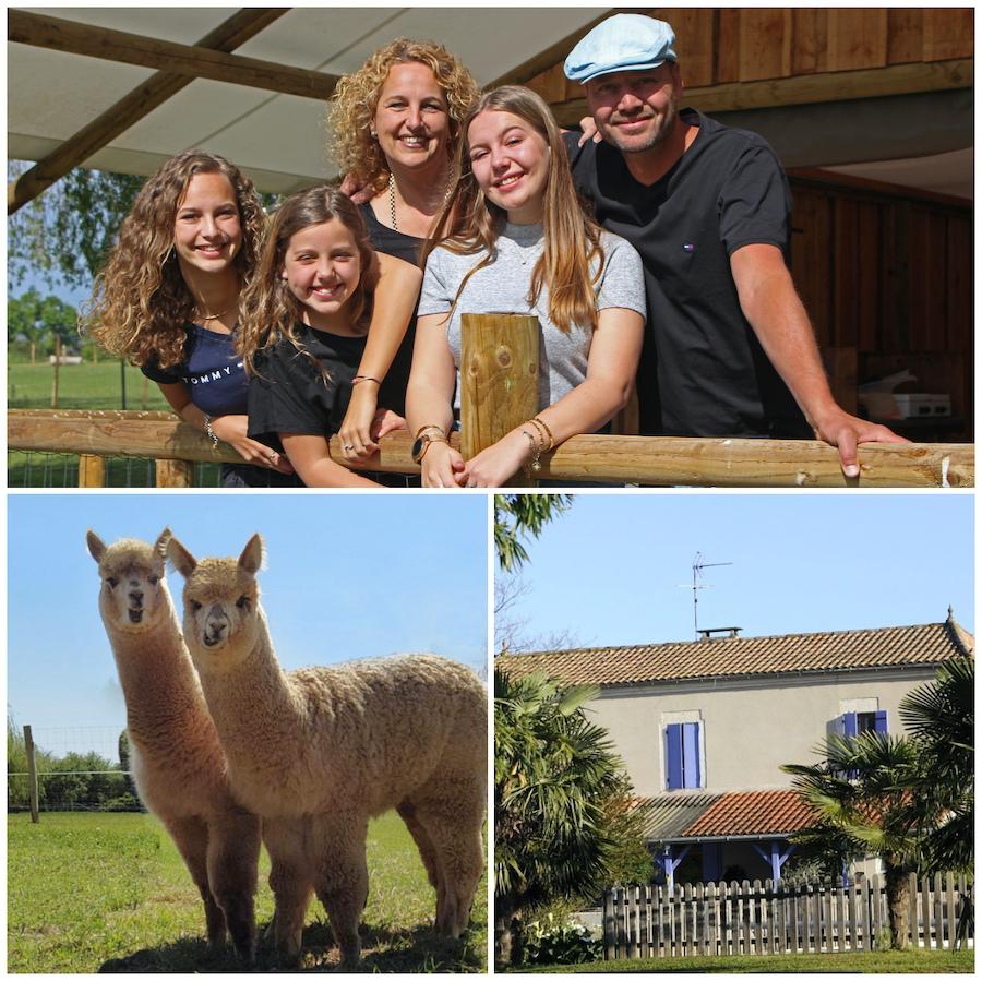 vakantiedomein alpaca's Nederlandse eigenaren
