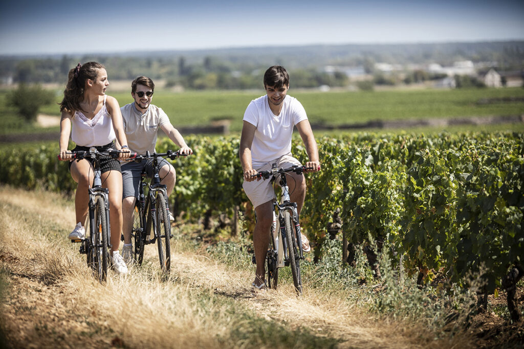 Huttopia Meursault Wandelen fietsen Bourgogne