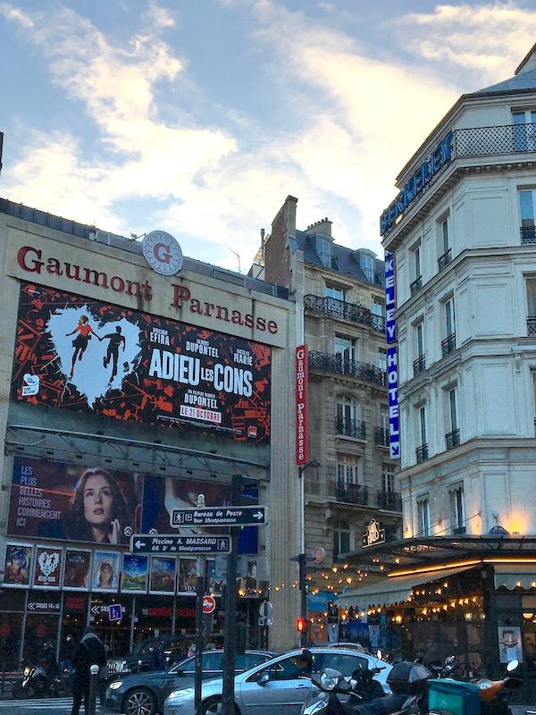 Adieu les Cons affiche Parijs