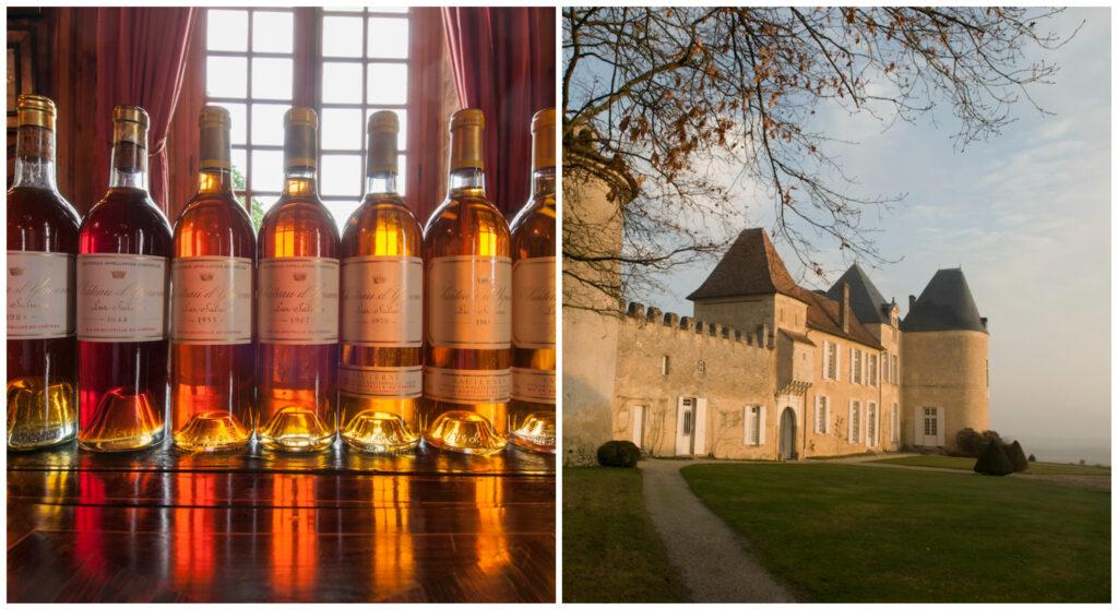 wijn Chateau d'Yquem